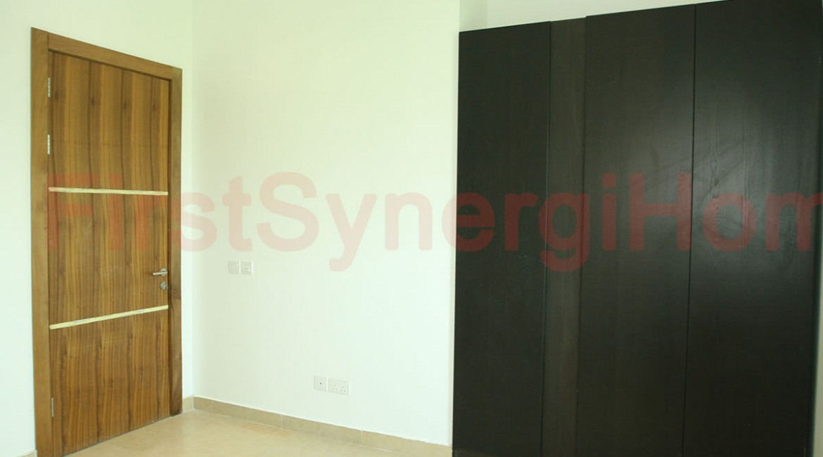 FirstSynergiHome1
